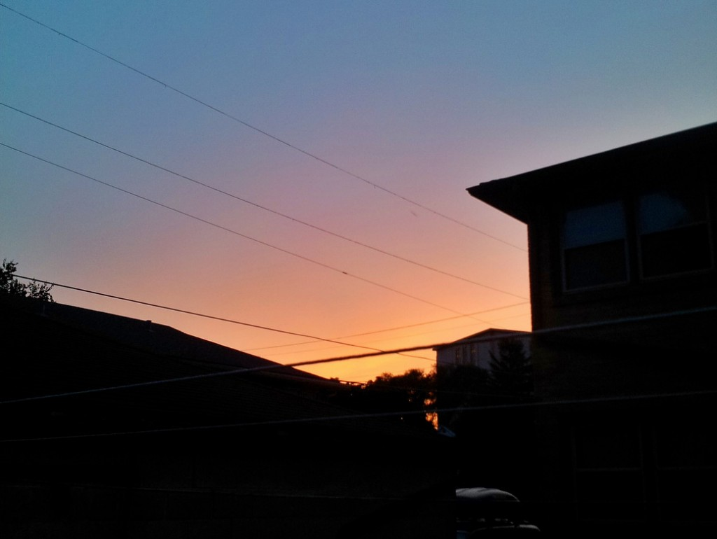 power lines: the energy efficiency project