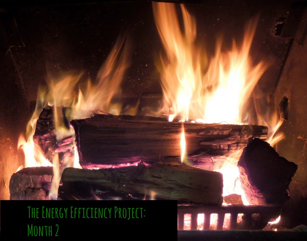 energy efficiency project month 2