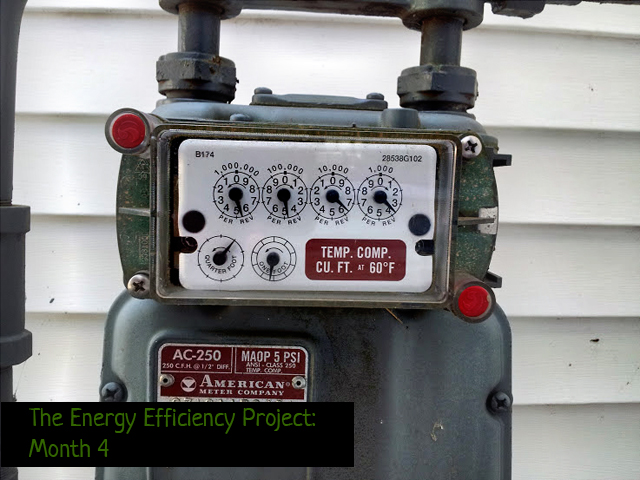 Energy Efficiency Project Month 4