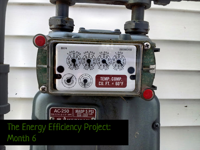 energy efficiency project month 6